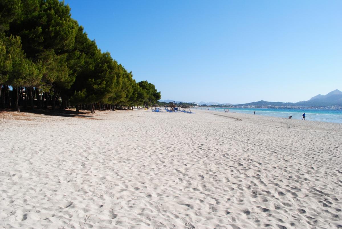 Болгария - живописная Албена. Красивый залив, пляж, песок, море, солнце...